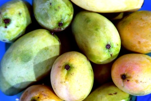 mangoes1