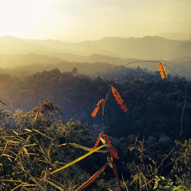Top of Panoentung Mountain in Kaeng Krachan National Park