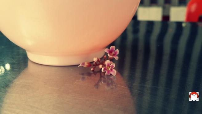 8. ดอกมะเฟือง