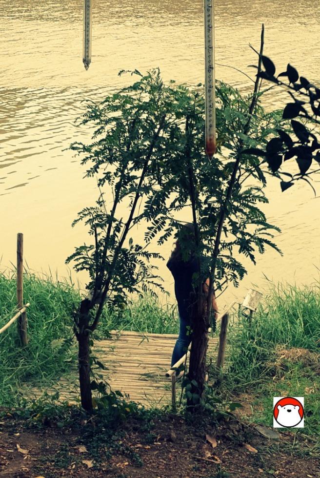 9. แม่น้ำปิง